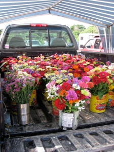 fresh flowers in the back of a pickup truck at West Tisbury Farmer's Market