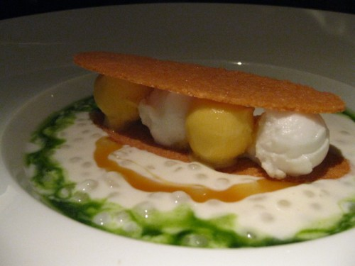 Coconut Tapioca with Coconut and Passionfruit Sorbets, Cilantro Syrup